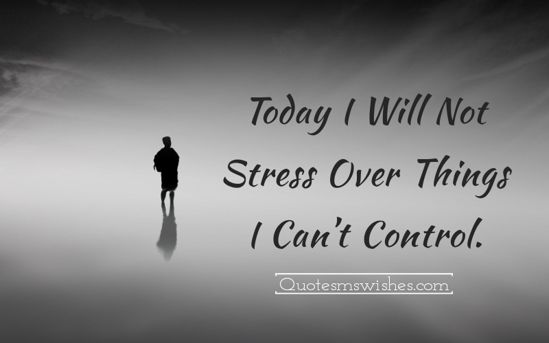 Today I Will Not Stress Over Things Quotes